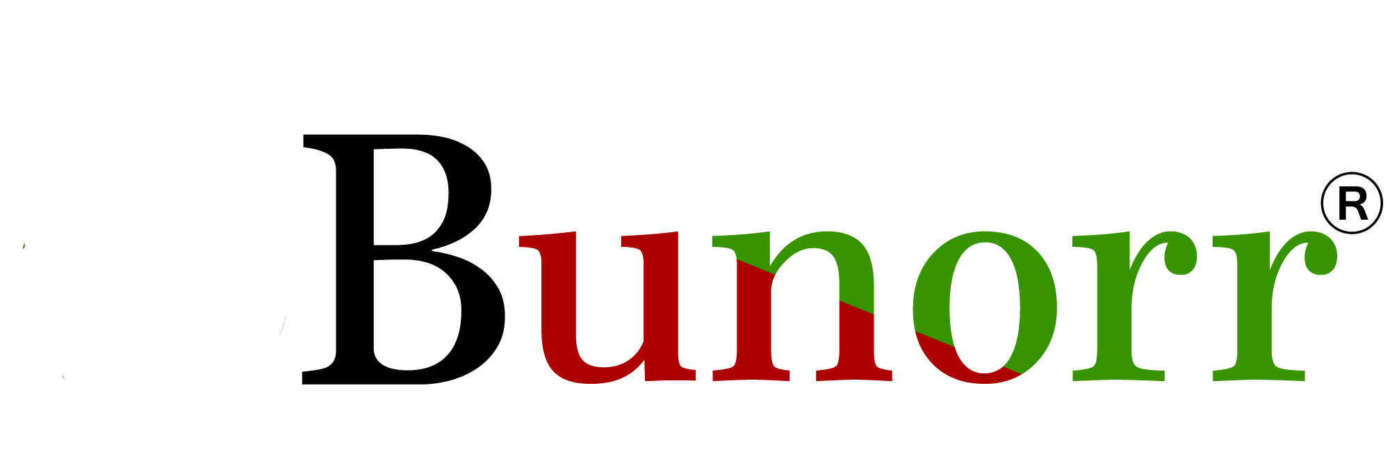 Bunorr Integrated Energy Limited's Company logo